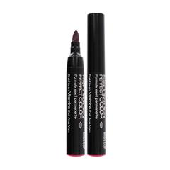 Color Lipstick Felt